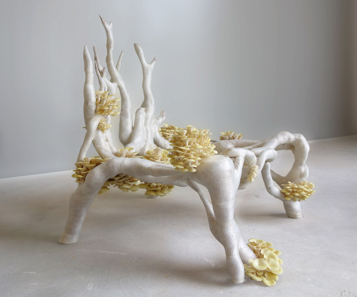 Image of 3D printed fungi chair made from packaging material alternatives from www.ericklarenbeek.com aka Mycelium Project 1.0 - Myceliumchair